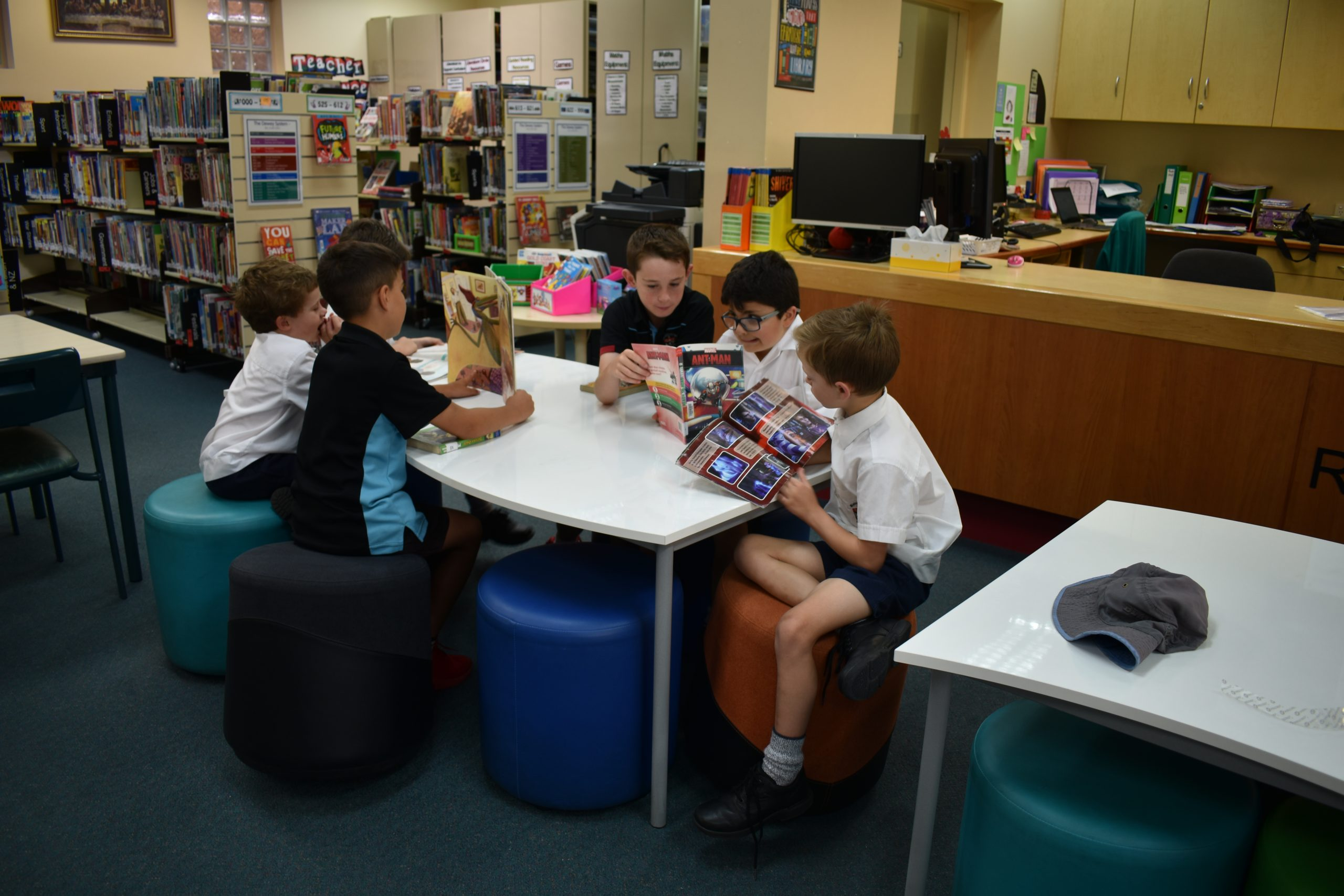 Primary boys reading in library